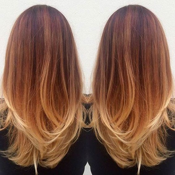 la bella-barre-pelo-8