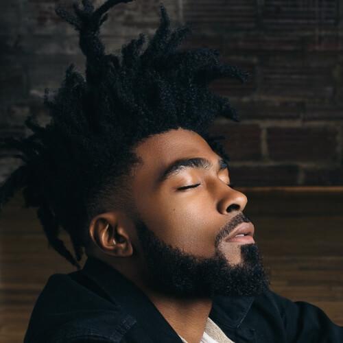 Afro Peinados para Hombres con Rastas