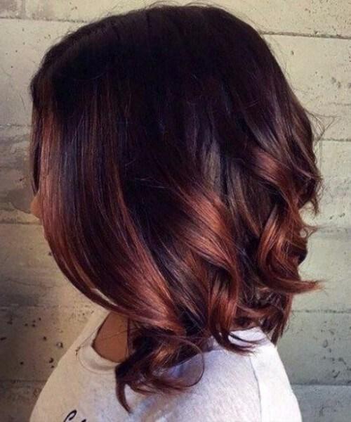 castaño de pelo corto ombre