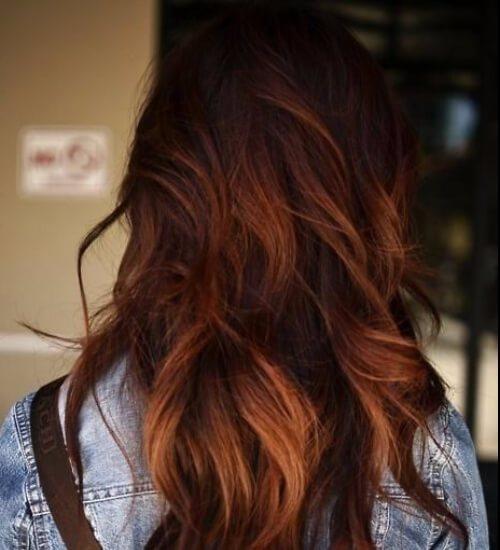 color de pelo castaño