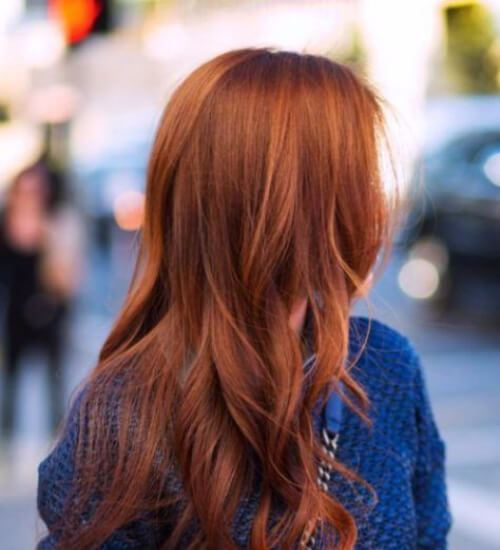 color de pelo castaño rojizo