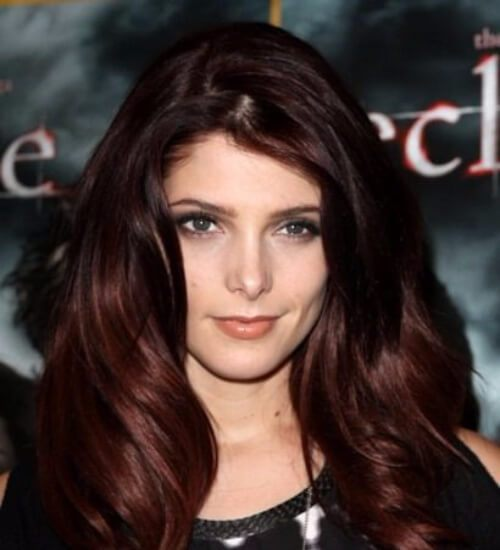 color de pelo castaño ashley greene