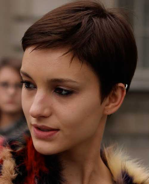 Brown Pixie Cut Peinados