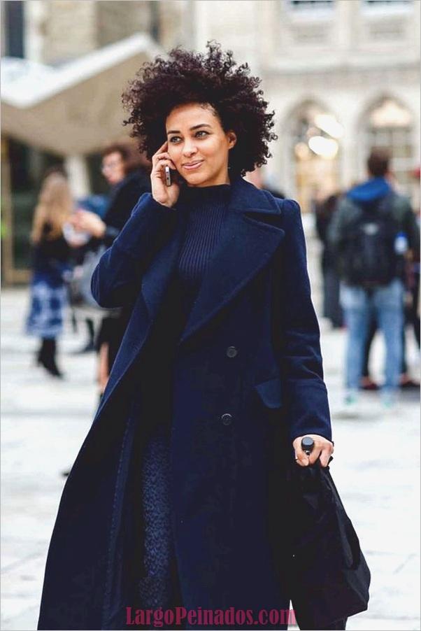 Peinados Naturales para Mujeres Negras (6)