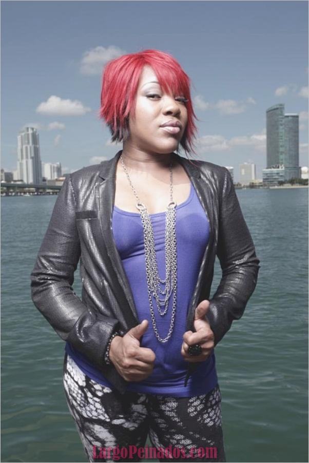 mujeres afroamericanas peinados0531