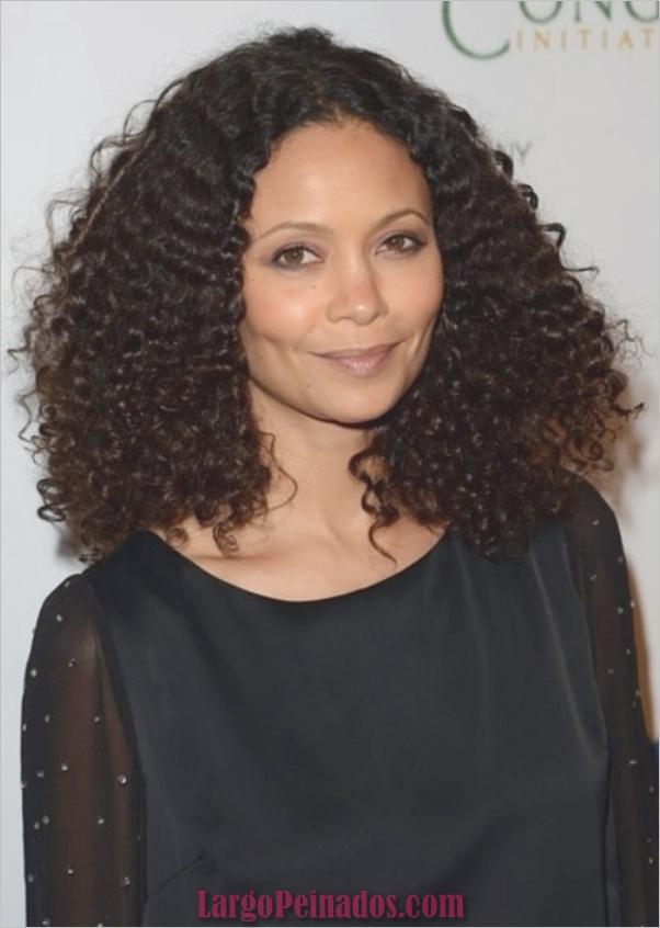 mujeres afroamericanas peinados0451
