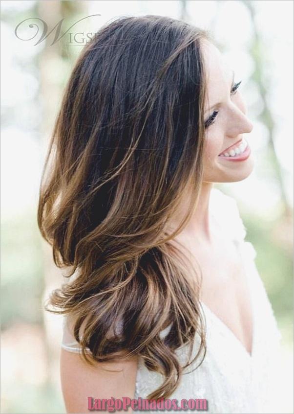 Ideas de color de cabello para mujeres (17)