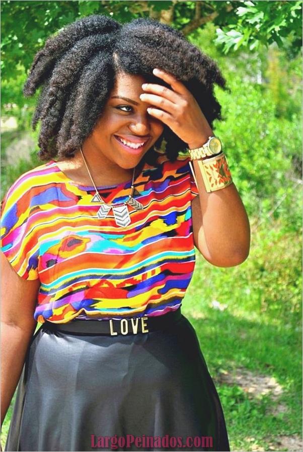 Peinados Naturales para Mujeres Negras (5)