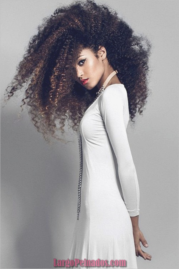 Peinados largos para mujeres negras (34)