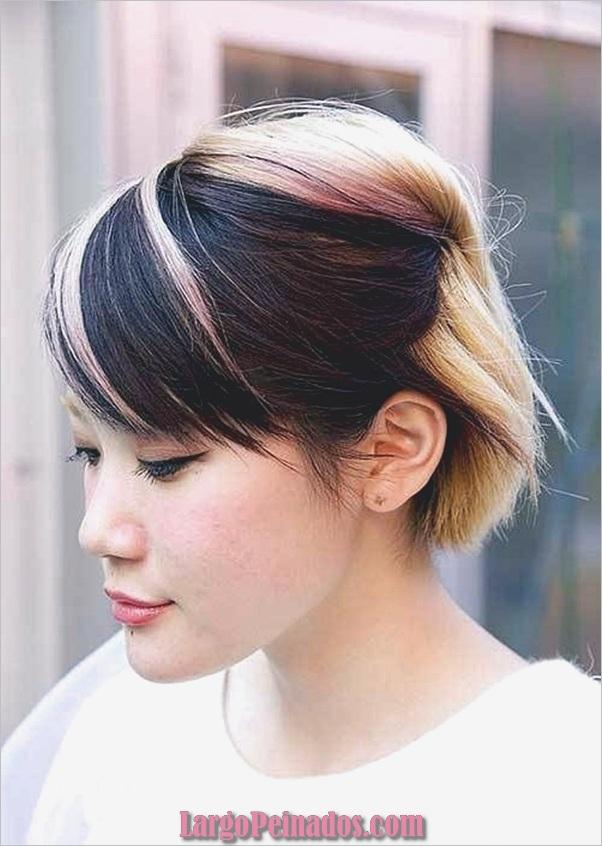 dos tonos de pelo-color-ideas-6