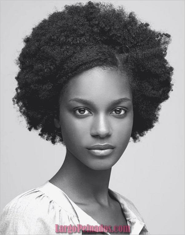 Peinados Naturales para Mujeres Negras (17)