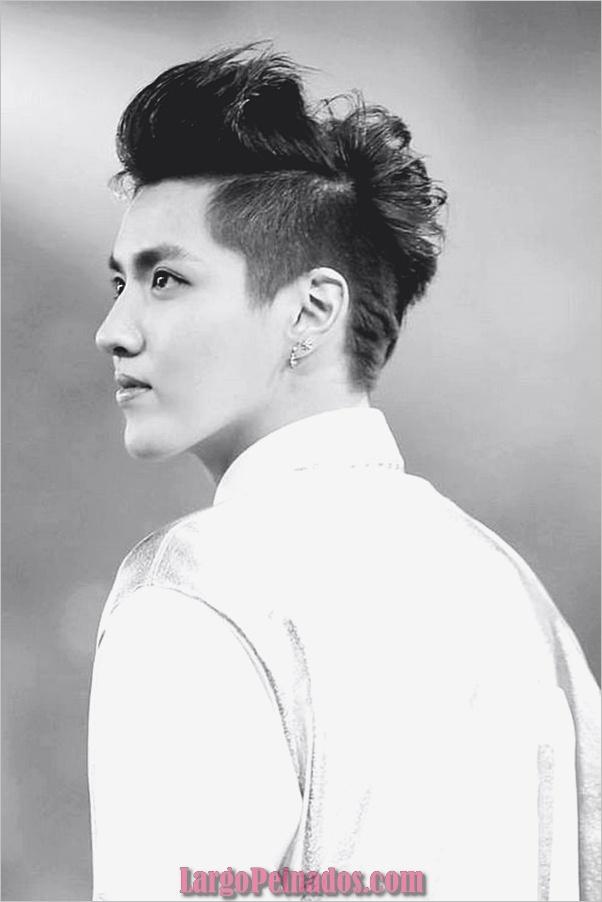 Los hombres coreanos peinados (5)