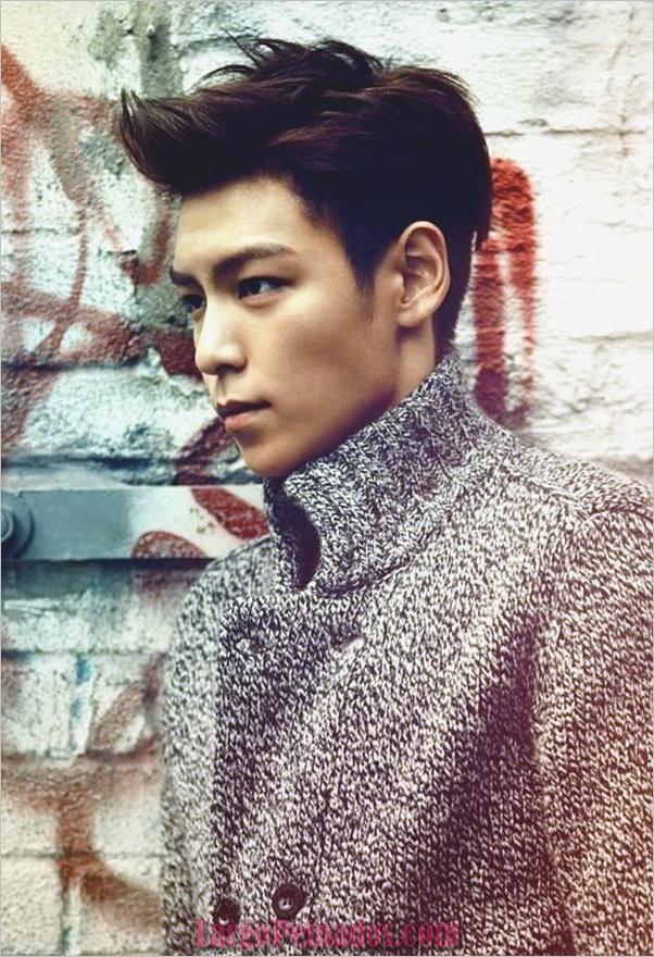 Los hombres coreanos peinados (14)